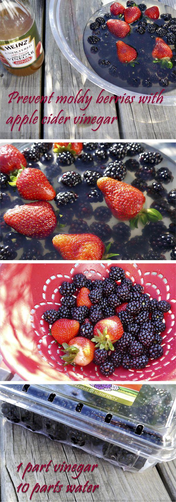 Heinz Apple Cider Vinegar wash to keep berries mold-free #HeinzVinegar #sponsored @Heinz Vinegar