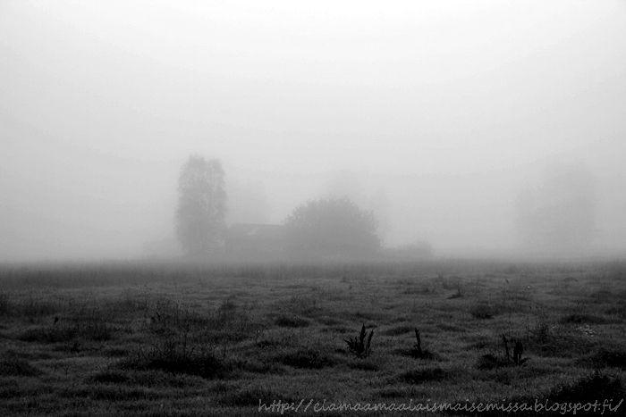 .: Nature Black and White