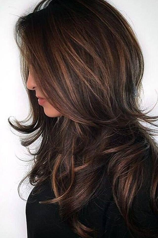 1021 Best Hair Flip Images On Pinterest Balayage Hair Dark