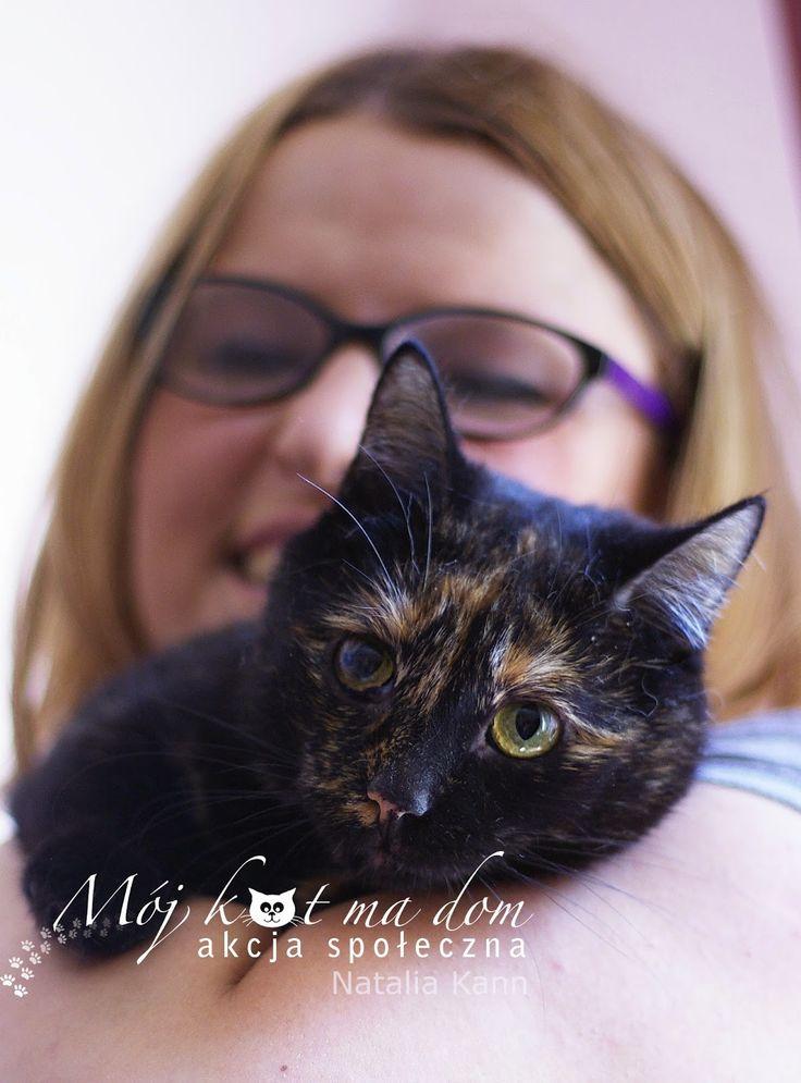 Mój kot ma dom - Akcja społeczna: IV.034