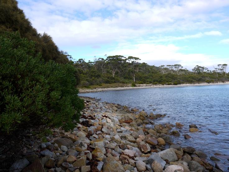 Serenity! @ Maria Island
