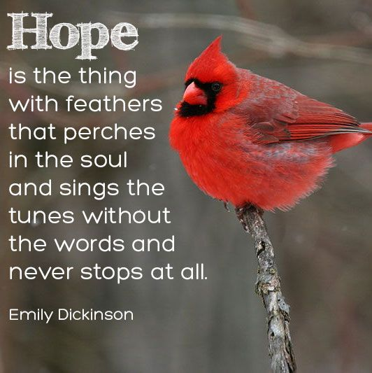 Hope is the thing with feathers that perches in the soul - Emily Dickinson