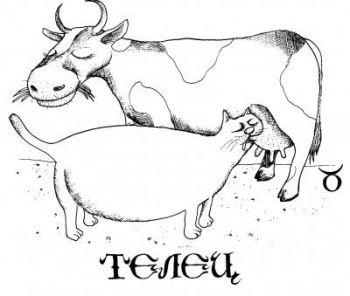 TAURO - Очень забавные иллюстрации знаков зодиака представлены в образе котов, котиков и кошечек. Все знаки зодиака.  Дева, Лев, Рак, Близнецы, Телец, Овен, Весы, Скорпион, Стрелец, Козерог, Водолей, Рыбы