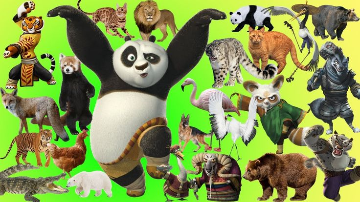wild animals, animals wild, Animals, learn animal names, animal sounds, learn english children, preschool, kindergarten, animal, animals, kids, wrong head, wrong heads, for kids, wrong, animals for kids, animals for children, learn animals, nursery rhymes, children, nursery rhymes songs, kids nursery rhymes, baby nursery rhymes, learn wild animals, tiger, kungfu panda, kungfu panda 3, lion, monkey, sheep, wolf, wolves, 울프, the wolf, toddlers, learn colors with wild animals, learning video