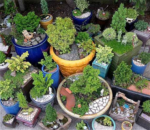 24 best Miniature Garden Pots Containers images on Pinterest
