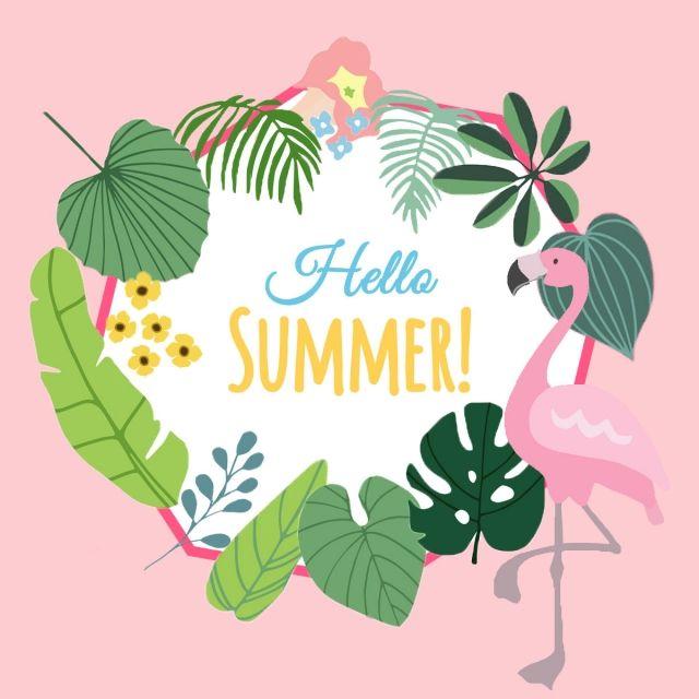 Pink Flamingo Tropical Hola Verano, Imágenes Prediseñadas De Flamenco,  Verano, Flamenco PNG y PSD para Descargar Gratis   Pngtree   Hello summer,  Summer drawings, Hello kitty backgrounds