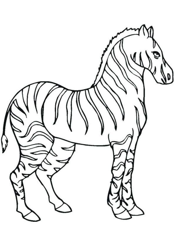 Printable Zebra Coloring Page Zebra Coloring Pages Animal Coloring Pages Unicorn Coloring Pages