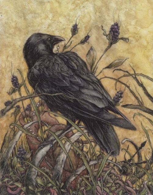 Arthur Rackham crow love this one!