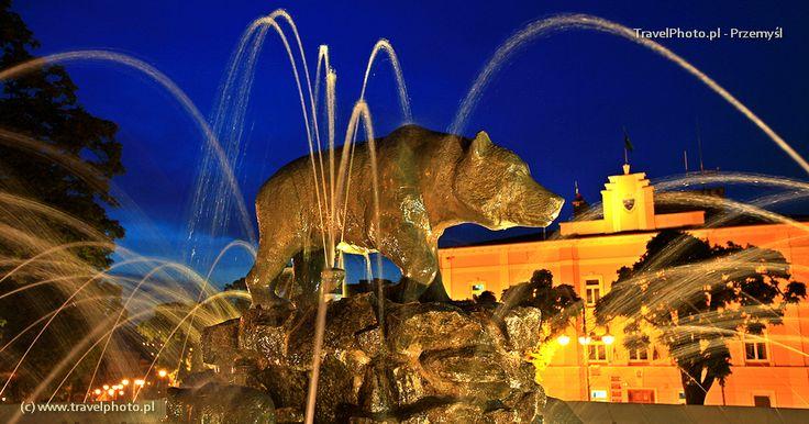 """Fountain """"Bear"""" on the Main Sqare of the city Przemysl in Poland. {Fontanna Niedźwiadek na rynku w Przemyślu} #Przemysl #Przemyśl #Poland #fountain"""