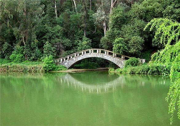 Jardin Botanico - Viña del Mar - Chile