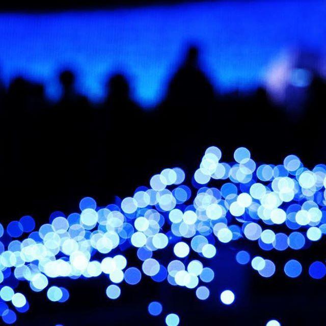 Instagram【25loveblue】さんの写真をピンしています。 《✴︎ 玉ボケ第2弾😝 前のスクリーンに目もくれず…😅 ✴︎ #なばなの里#イルミネーション #夜景#キラキラ#青#blue #ダレカニミセタイケシキ  #jalan_asobi  #asi_es_blueworld  #myworld_in_blue #be_one_blue #一眼レフ練習中  #canon #eoskissx8i》