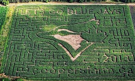 Groupon - Farm Visit with Corn Maze for Two or Four at Cooper's CSA Farm & Maze (Up to 53% Off). Groupon deal price: $8.00