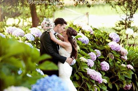 Love among the hydrangeas at Aravina Estate, bouquet by Scentiment Flowers, pic by Blakeney Photography