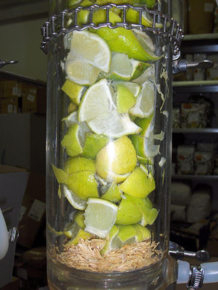 Estratto di Lime nel percolatore con glicerina vegetale #gogreen
