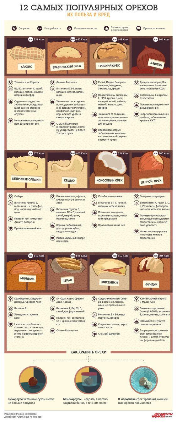 12 самых популярных орехов: их польза и вред. Инфографика   Продукты и напитки   Кухня   Аргументы и Факты: