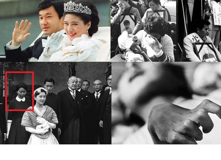 草 でれでれ 続・秋篠宮家のダブル④コメント欄より「直虎」は皇室問題のリーク、悠仁さまは北朝鮮の人質に?