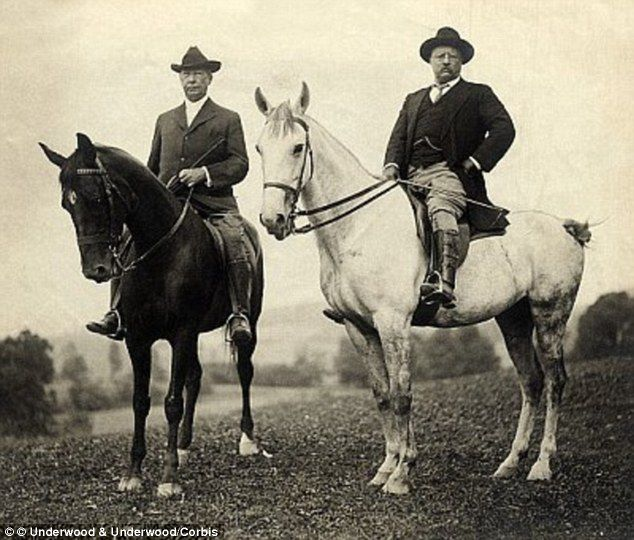 famous photo of teddy roosevelt riding a moose revealed to
