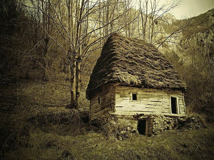 old log and thatch house by archturus