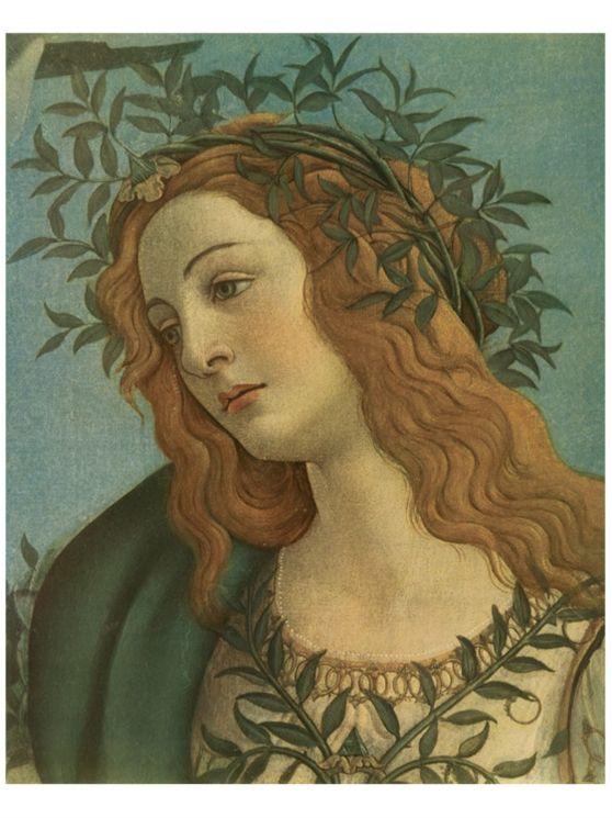 Detail of Minerva, Sandro Botticelli.