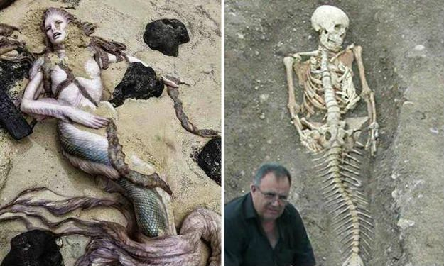 Top 10 Real Life Mermaid Found with Pictures Proved It is Real – Mysterious Monsters