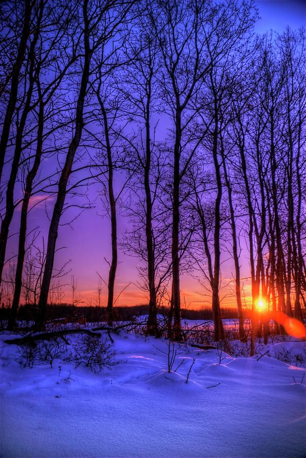 A wintery sunset in rural Saskatchewan, Canada  (by Wayne Stadler)