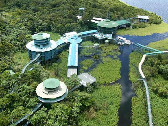 Ariau Amazon Towers Hotel Ariau Creek Brazil 35 miles from Manuas. 4 miles of walks at canopy level