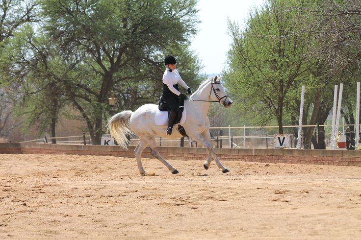 Jenny and Morgana in Liberty's 60x20m dressage arena - photo by Michael van Dyk