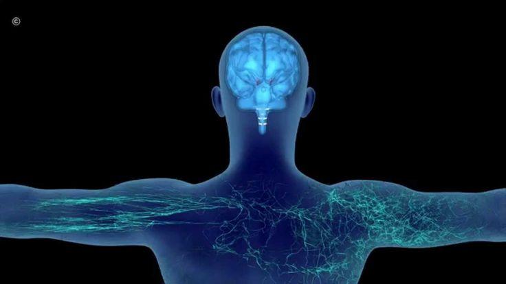 GLG Benessere e Sole: siamo specialisti in #Tecarterapia® www.glgshop.com