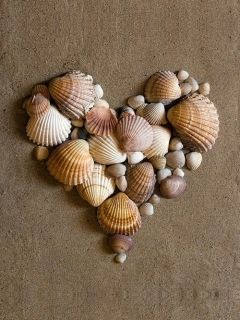 Download free Shells Heart Mobile Wallpaper contributed by corneliusyyk, Shells Heart Mobile Wallpaper is uploaded in Nature Wallpapers category. Download free Shells Heart Mobile Wallpaper contributed by corneliusyyk, Shells Heart Mobile Wallpaper is uploaded in Nature Wallpapers category.
