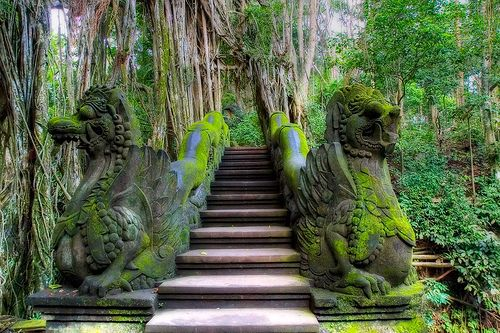 Mandala Wisata Wanara Wana  Ubud, Indonesia
