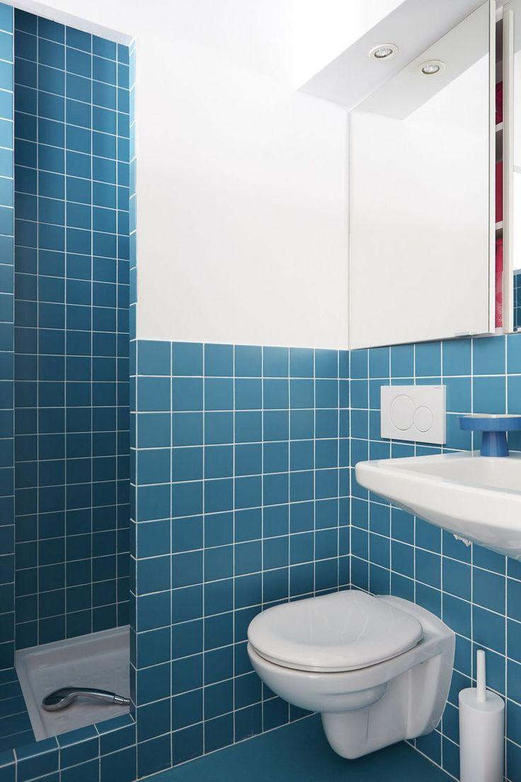 1000 id es sur le th me douches de petite salle de bains for Idee carrelage petite salle de bain