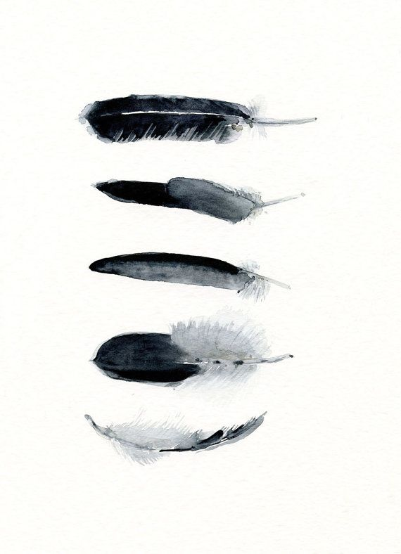 Feather art work - 5 Feathers - from original watercolor painting - black and white bird feathers - hand painted watercolor - Modern art