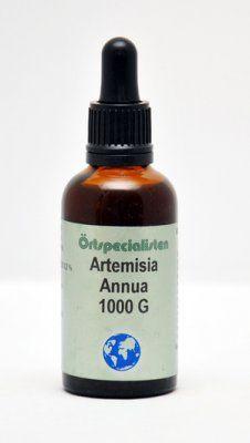 ARTEMISIA ANNUA 1000 G