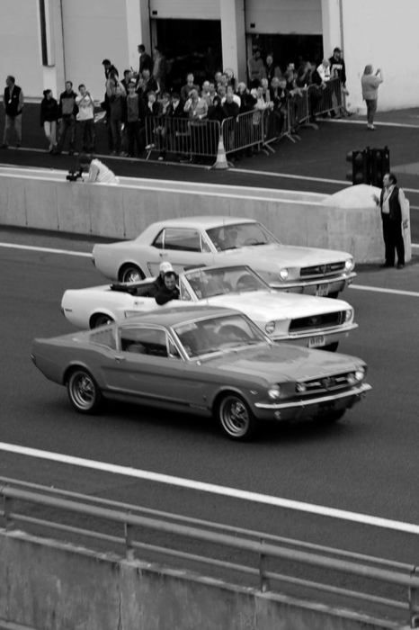 1965 Mustangs...Fastback 2 plus 2, Convertible, and standard Coupe. Three little Ponies that made a difference in Detroit.