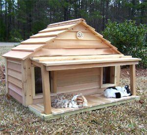 Cat Outside House Sale - Cedar Duplex Cat House with Porch & Deck : Size 40X20 CEDAR W PORCH & DECK - INSULATED by Blythe Woodworks - Price: $688.00   #outsidecathouse #outdoorcathouse #catoutsidehouse http://www.catbedandtoy.com/outdoorcathouse