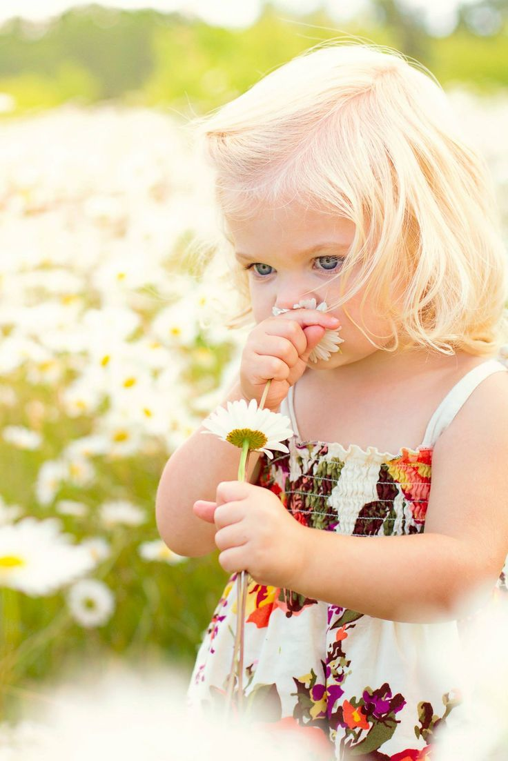 Playing with daisies