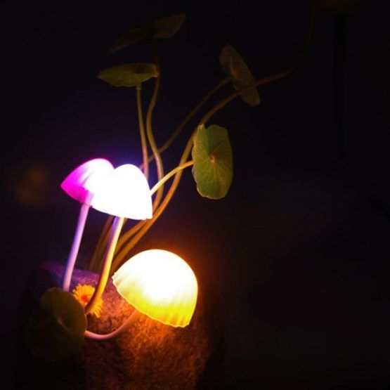 Creative Novelty Decoration Colorful Mushroom LED Night Light  $42.00    Style: Modern/Contemporary  Categories: Light  Material: Other  Weight: 0.430kg  Package Contents: 1 x Night Light