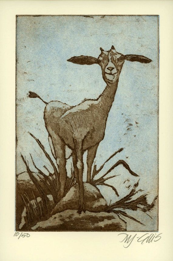 etching 'Goat' olive sepia sky blue by mariannjohansenellis on Etsy   Leicester Print Workshop