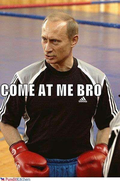 Image result for obama putin boxing