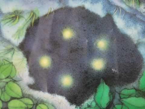 De mooiste vis van de zee is gelukkig niet bang meer (digitaal prentenboek) Er is maar één medicijn dat de zieke Knobbel kan genezen en dat groeit in de enge Duivelskloof; Regenboog en Vinnie durven de gevaarlijke tocht aan.