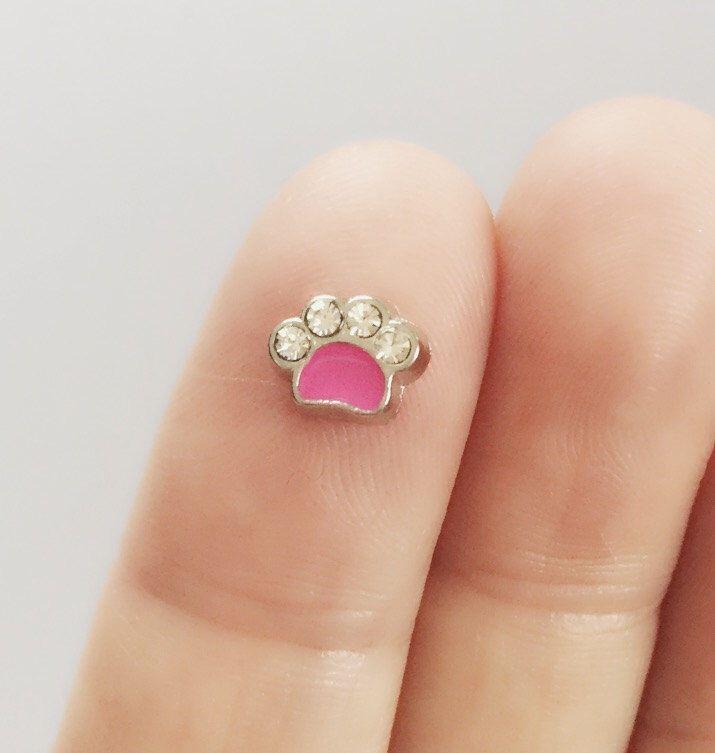 3 rosa de la pata flotante encantos para memoria medallones / rosa pata cristal encanto / encanto del amante del animal doméstico / FC7 de kikibloo en Etsy https://www.etsy.com/es/listing/510221891/3-rosa-de-la-pata-flotante-encantos-para