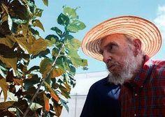 El secreto de Fidel Castro para vivir durante tantos años