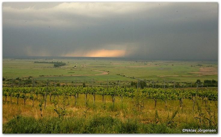 The Zafir site in Tokaj, Hungary.