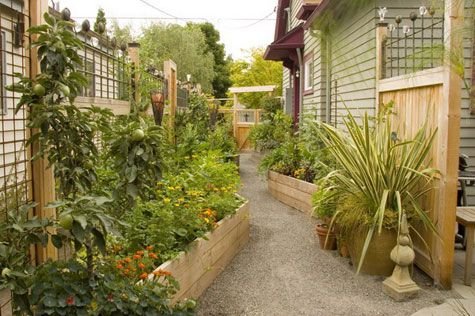 The amount of stuff they're growing on the side of this house and how amazing it looks is awesome.