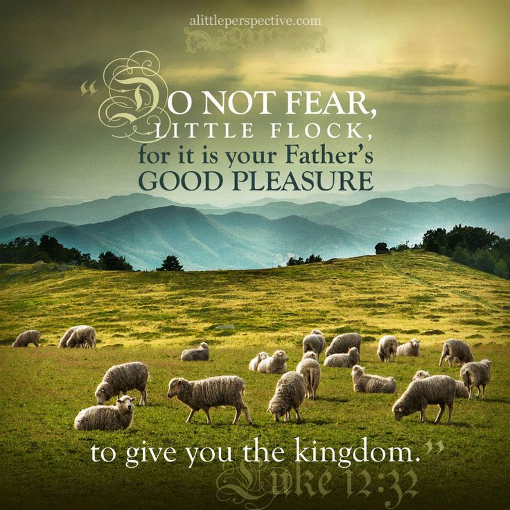 """Do not fear, little flock, for it is your Father's good pleasure to give you the kingdom."" Luke 12:32 