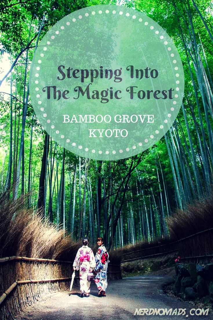 We had a great walk through the amazing bamboo grove in #Kyoto! @nerdnomads http://nerdnomads.com/bamboo-grove-kyoto