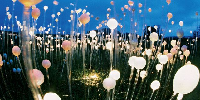 Photo of Long Knoll installation of field of light by Bruce Munro