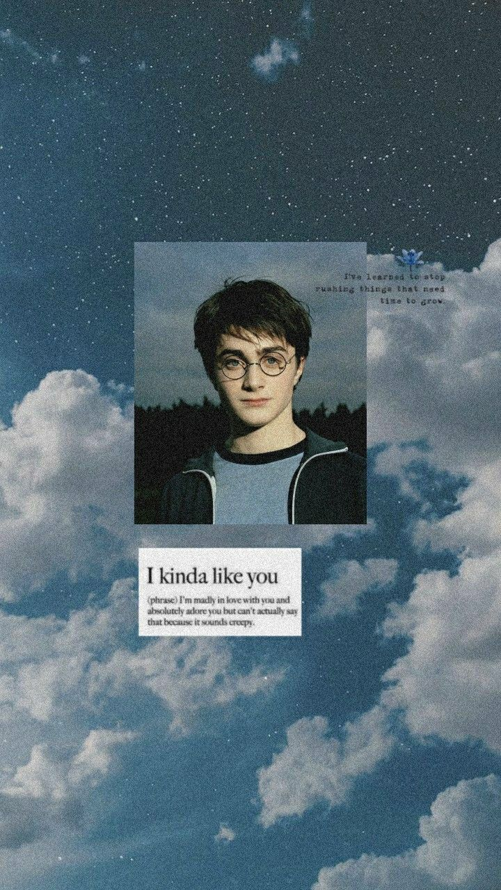 Harry Potter Aesthetic Wallpaper Harry Potter Background Harry Potter Pictures Harry James Potter