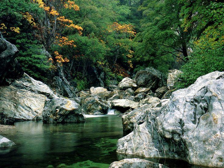 BIg Sur River Gorge