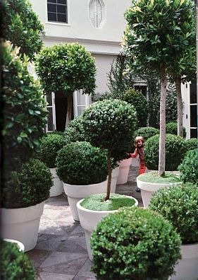 Kelly Wearstler's garden.Gardens Ideas Diy, Decor Ideas, Hands Made, Diy Fashion, Diy Gift, Topiaries Gardens, Gardens Projects, Kelly Wearstler, Landscapes Design